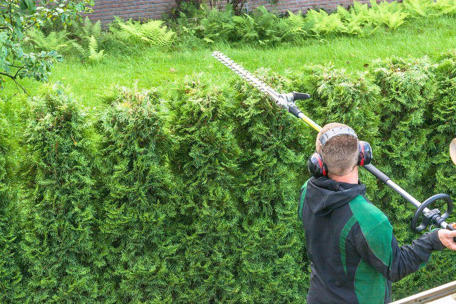 gardening business sydney