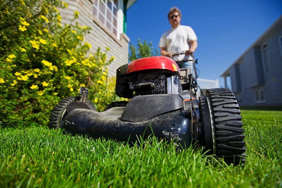 gardening sydney business
