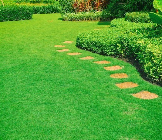 Tactics To Mow The Perfect Lawn