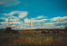 Anti-wind group Waubra Foundation stripped of low-tax status