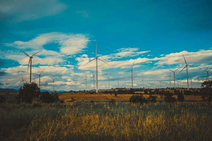 Anti-wind group Waubra Foundation stripped of low-tax status