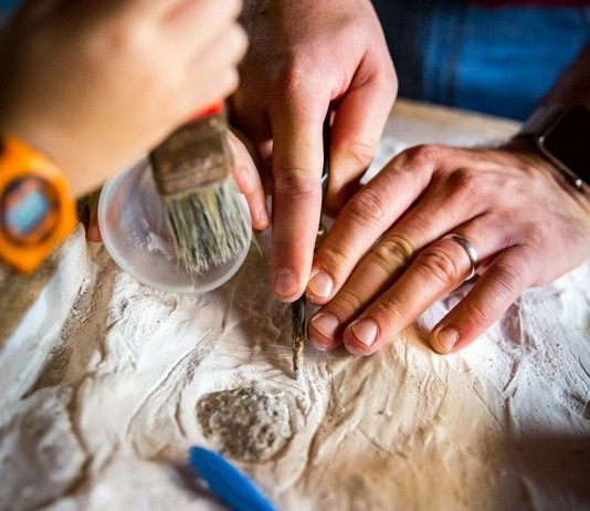 Paleontology fossils discovery
