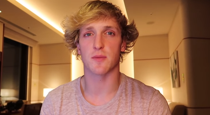 Logan Paul Slammed On Twitter By Sophie Turner