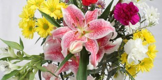 There is nothing more special than flowers for a birthday boy/girl?