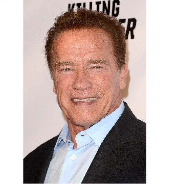 Arnold Schwarzenegger joins cast of Kung Fury feature film
