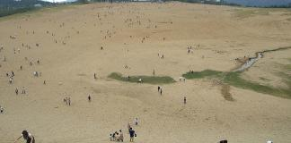 Save the beetle Tottori sand dunes