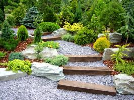 Tips for achieving the perfect backyard. Photo: cycreation via Bigstock