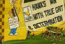 AFL team the Hawthorn Hawks