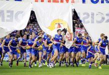 AFL team the Western Bulldogs