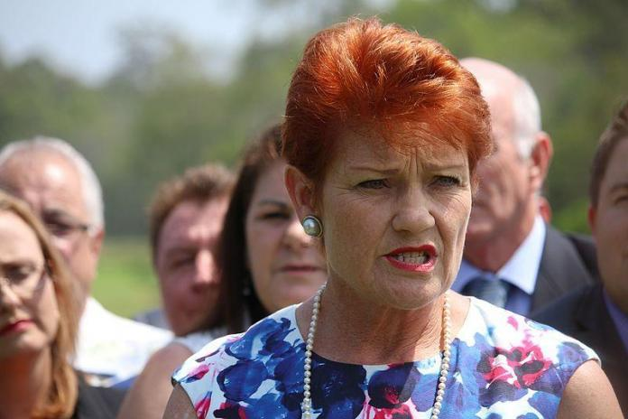 Hanson says One Nation isn't split despite Burston breaking ranks