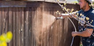 What is the difference between HVLP and airless sprayers