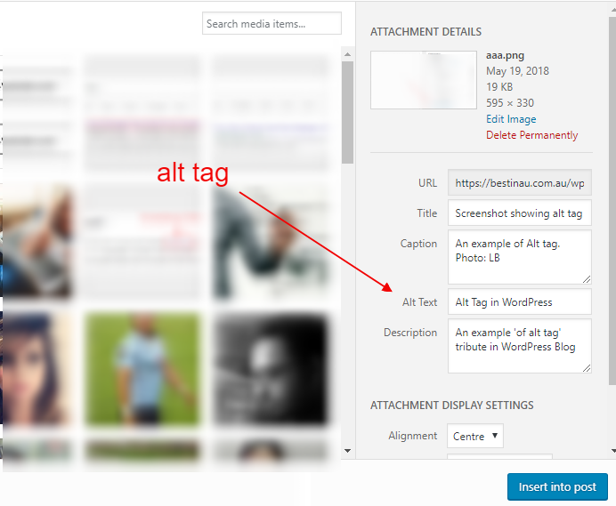 Alt Tag in WordPress