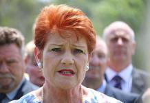 Pauline Hanson's One Nation continues to decline as senator Brian Burston calls quits