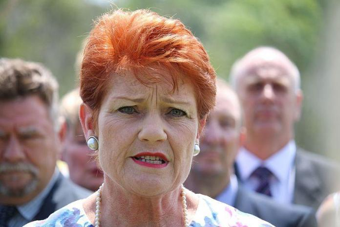 Pauline Hanson's One Nation continues to decline as senator Brian Burston calls quits