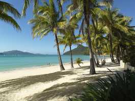 Great Barrier Reef Foundation treats big business to tropical holiday