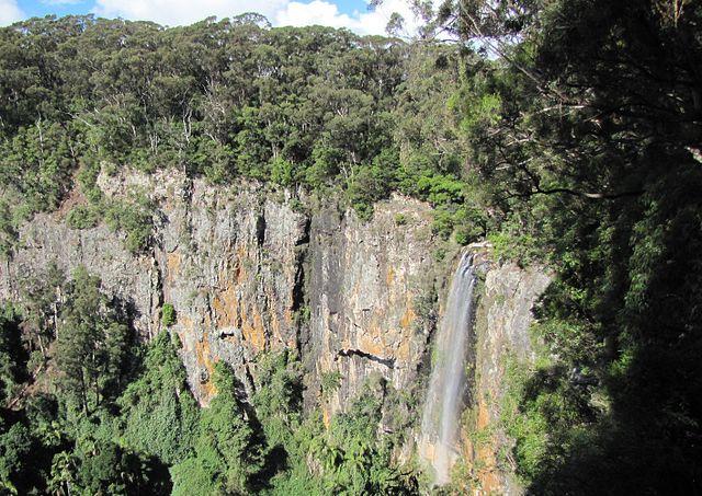 World Heritage listed Gondwana Rainforest