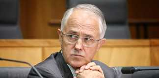 Malcolm Turnbull outlines further NEG changes amid party pressure
