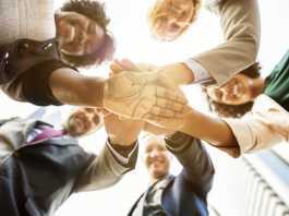 6 best staff team building activities