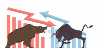Learning to tame the bear trading in tough times
