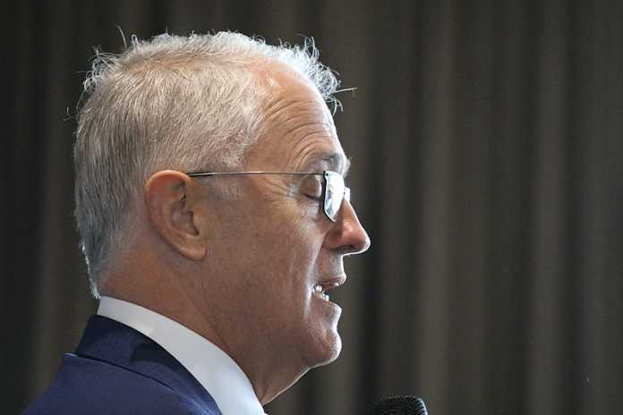 Former Prime Minister Malcolm Turnbull hits out at Rudd and Abbott
