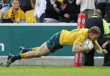 Hodge injury may force Cheika to get creative