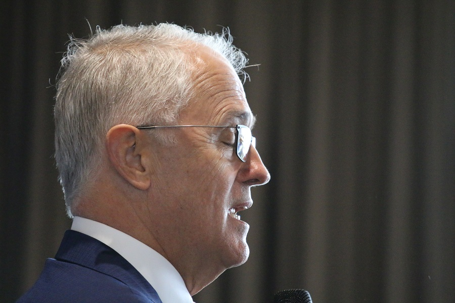 Turnbull calls out coup plotters, Pyne backs him up