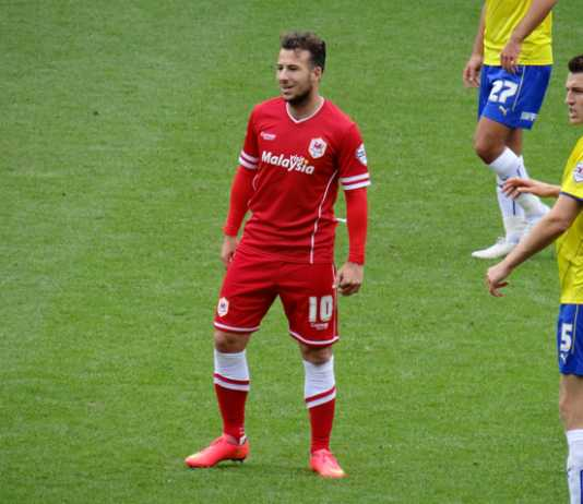 Adam Le Fondre will be key to sydney fc's title defence