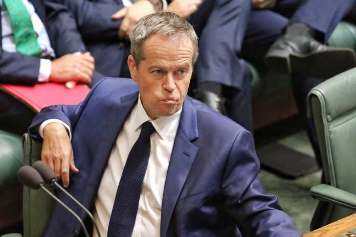 Shorten's policy to reward whistleblowers deemed 'wacky' by O'Dwyer
