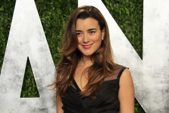 Latest episode of NCIS suggests Ziva may be alive