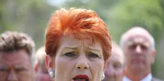 Pauline Hanson accused of sexual harassment by former colleague