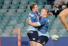 A guide to the Australian Super Rugby teams this season