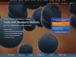 Blueberry Markets Review