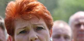 Pauline Hanson's One Nation under fire for seeking NRA funding