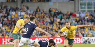 Is Quade Cooper in line for a recall to the Wallabies?