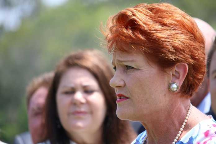 Pauline Hanson claims Al Jazeera footage was maliciously edited