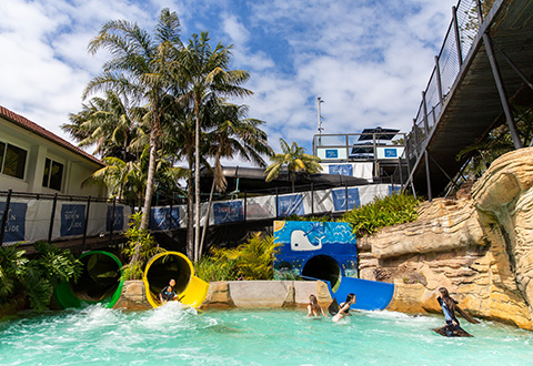 Manly Surf n Slide
