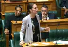 New Zealand gun law reform passes with only one MP against