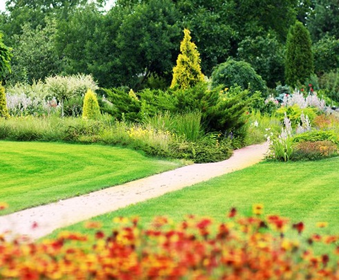 A&A ABloom Ace Gardening Services