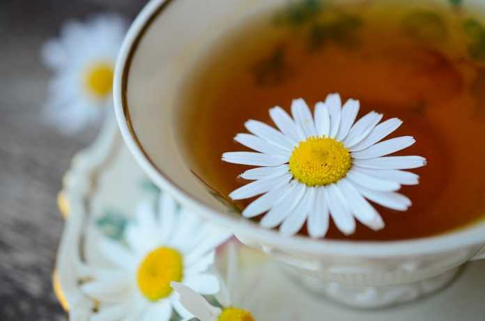 Chamomile tea as a herbal medicine. Source: Pixabay
