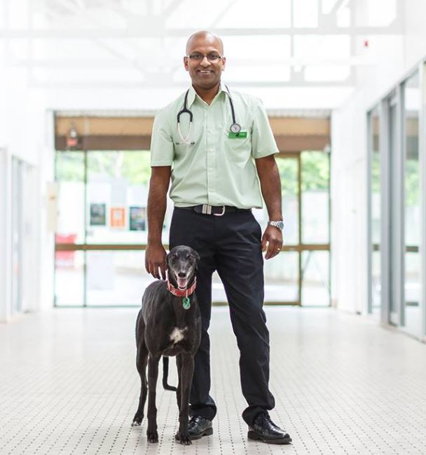 Dr Raj Wicks - The Dog Clinic Hobart