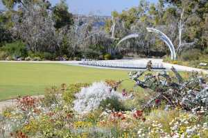 King's Park and Botanic Garden