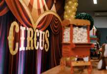 Best Circuses in Brisbane