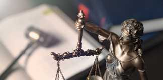Best Constitutional Law Lawyers in Sydney