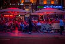 Best Pubs in Brisbane