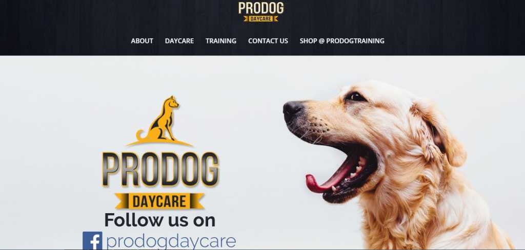 Best Pet Care Centre in Melbourne