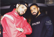 Chris Brown teases new collab with Drake for the single No Guidance
