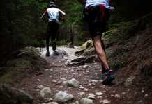 Best Hiking Trails in Adelaide