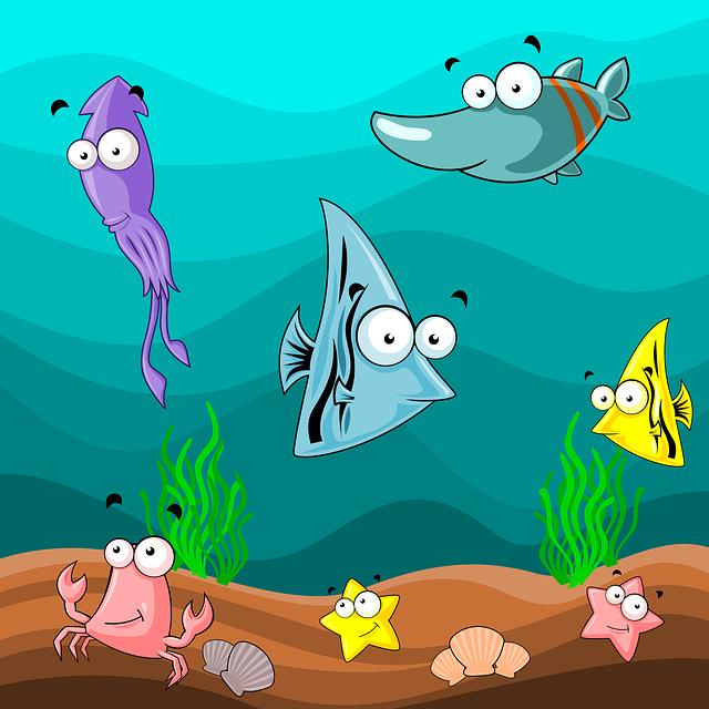 Best Aquarium Shops in Adelaide