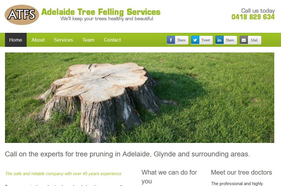 Adelaide Tree Felling Services