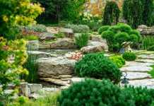 Best Landscaping Companies in Hobart